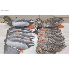 3 Boyutlu Ördek Mühresi 3 Erkek 3 Dişi
